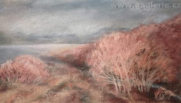 ELGAR, suchý pastel, 43 x 25,  www.art-we.cz