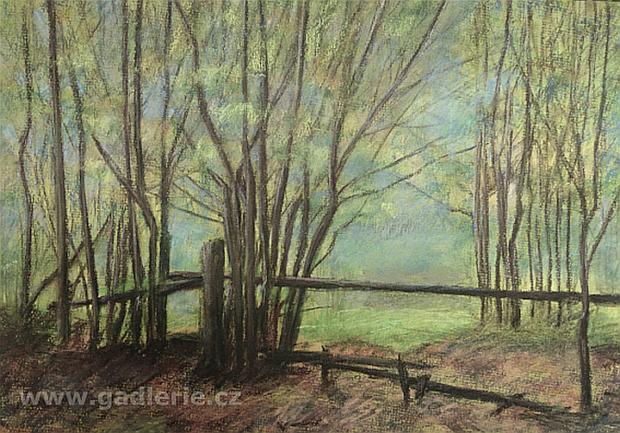 TENTO ZPŮSOB LÉTA, suchý pastel, karton, 45 x 33 cm