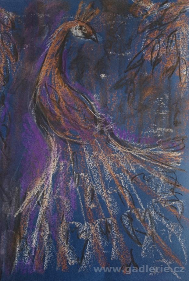 PÁV, suchý pastel, karton, 35 x 50