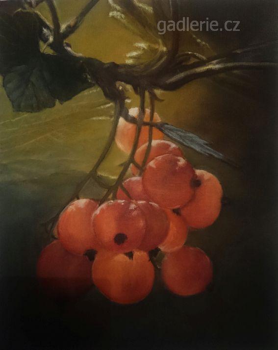 BOBULE, olej, plátno na desce, 24 x 30, NEDOSTUPNÝ