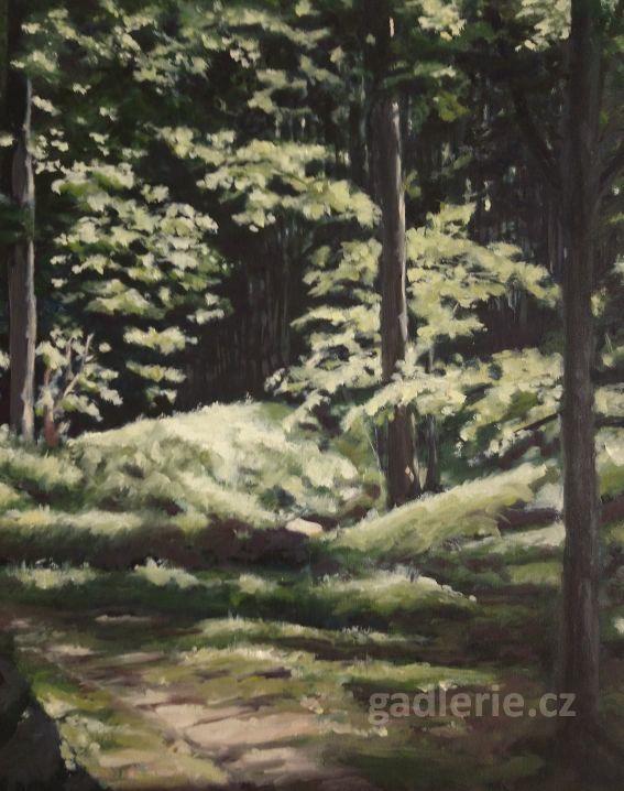 ZVÁNOVICE II, olej, plátno na desce, 40 x 50